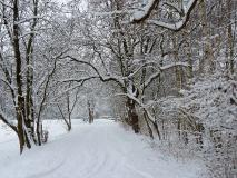 Winterspaziergang zur Weihnachtskirche
